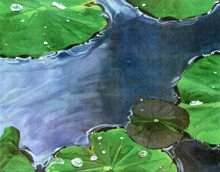 Bali - Lily Pads