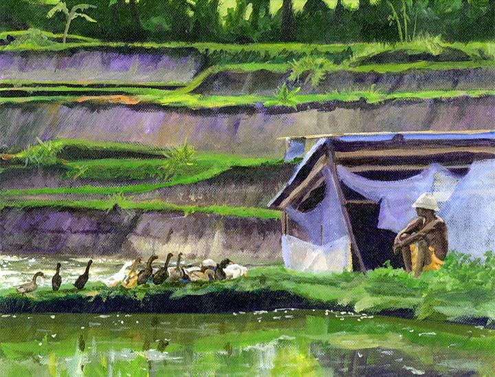 Bali - Rice Farmer