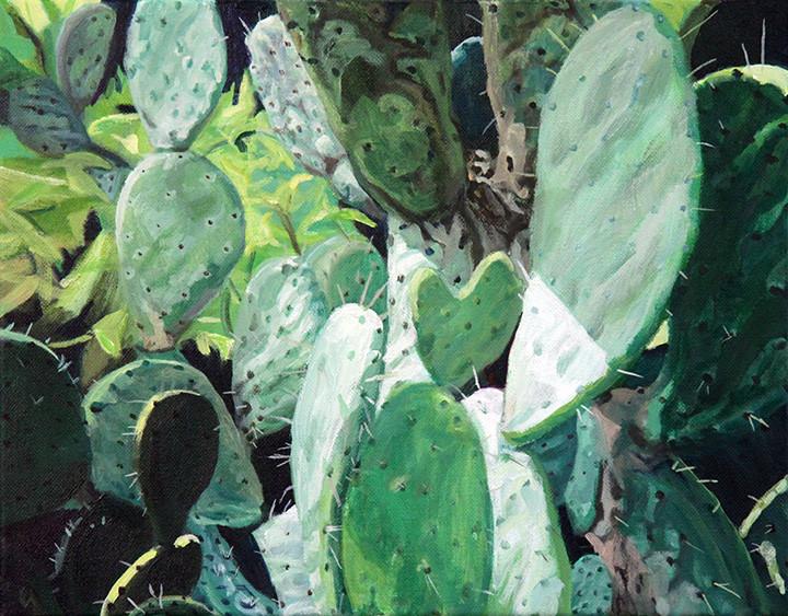 New Mexico - Cactus