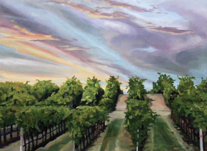 Sonoma County - Sunset